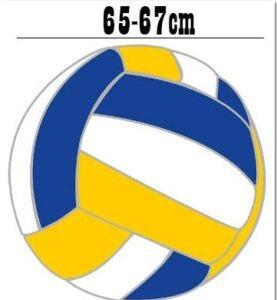 Medidas de la balon de voleibol